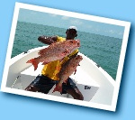 Special sport fishing stay in the Bijagos, Guinea Bissau. Hosting in hotel on bubaque island