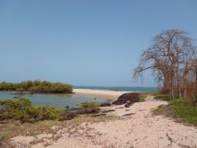 Bubaque island landscape in the Bijagos