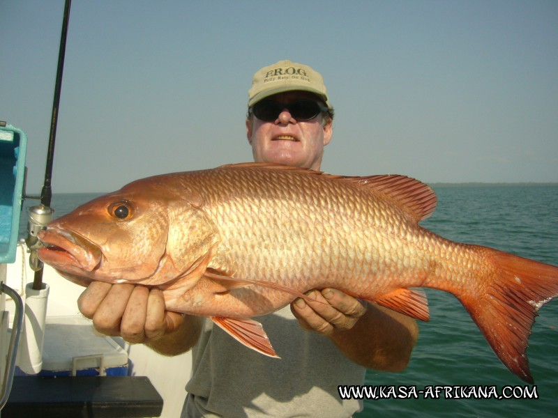 Photos Bijagos Island, Guinea Bissau : Our best catches - African red snapper