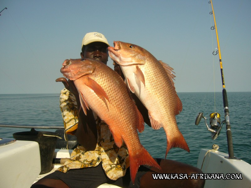 Photos Bijagos Island, Guinea Bissau : Our best catches - Double african red snapper