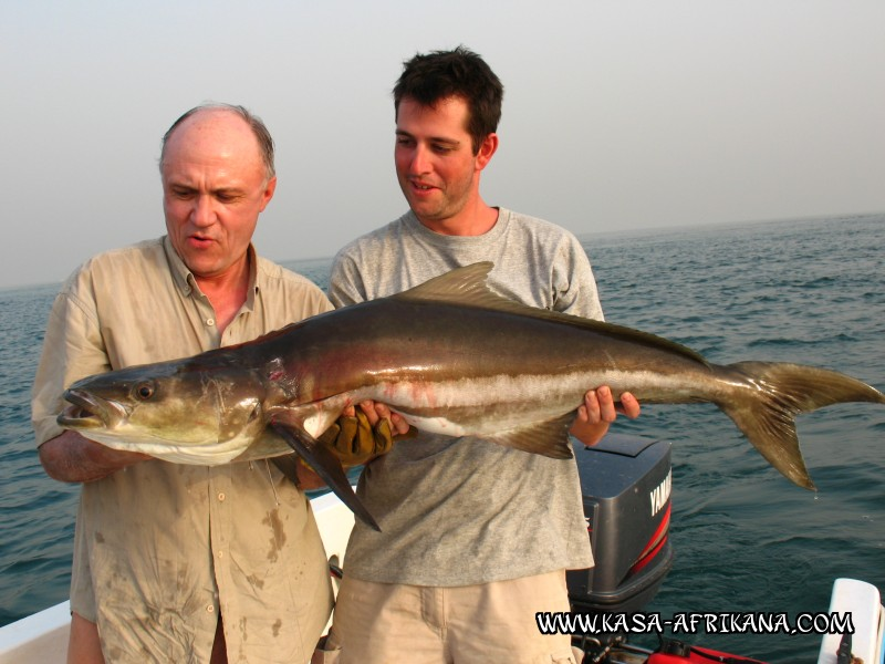 Photos Bijagos Island, Guinea Bissau : Our best catches - Cobia