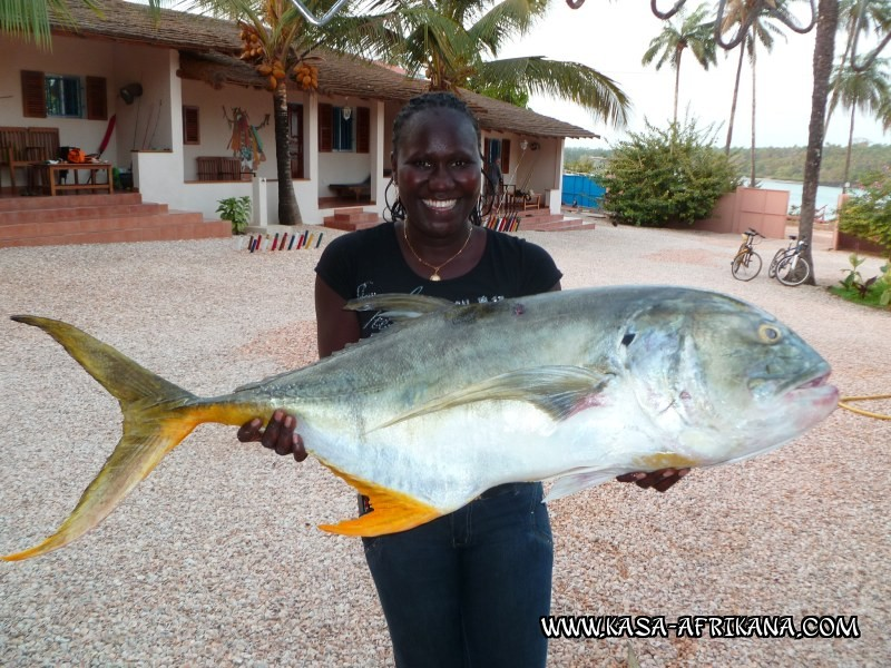 Photos Bijagos Island, Guinea Bissau : Our best catches - 23kg Jack