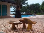 Photos of Bijagos Islands in Guinea Bissau : Tropical mushrooms