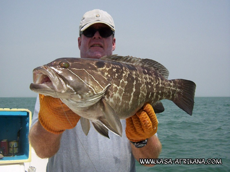 Photos Bijagos Island, Guinea Bissau : Our best catches - White grouper