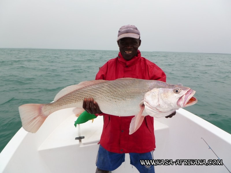Photos Bijagos Island, Guinea Bissau : Our best catches - Big Umbrine